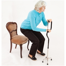Sit & Stand Walking Stick