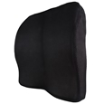 Seat & Back Chair Cushion_COCHS_1