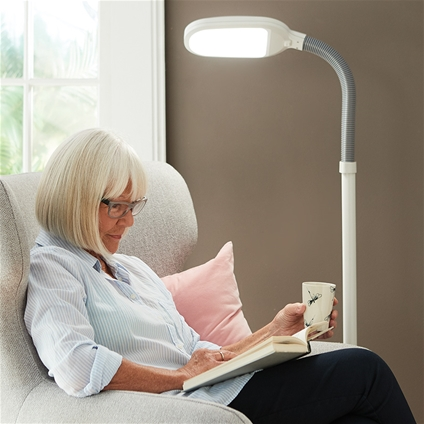 Energy Efficient Floor Lamp